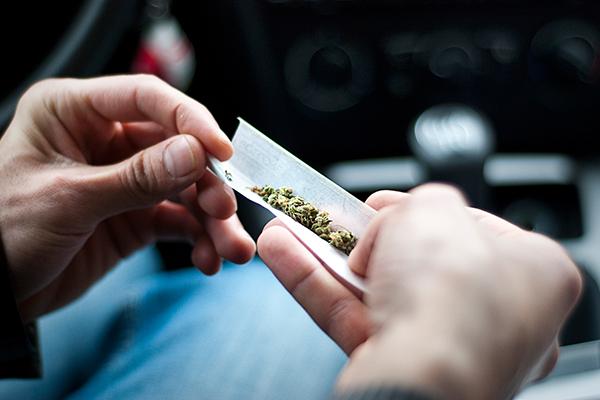 drug busts,marijuana busts,pot busts,drug,marijuana,pot