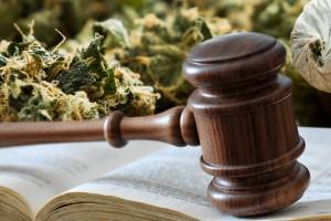 drug lawyer,drug attorney oklahoma,drug lawyer oklahoma,marijuana arrests