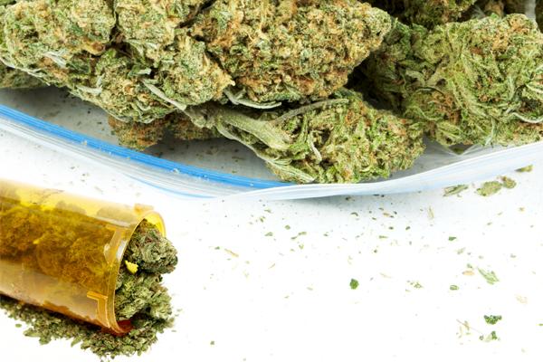 marijuana possession,illegal marijuana possession,marijuana arrests,marijuana busts,marijuana charge